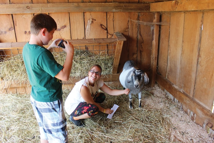 Student and teacher inside goat shelter discussing. Student using camera phone to take a picture.