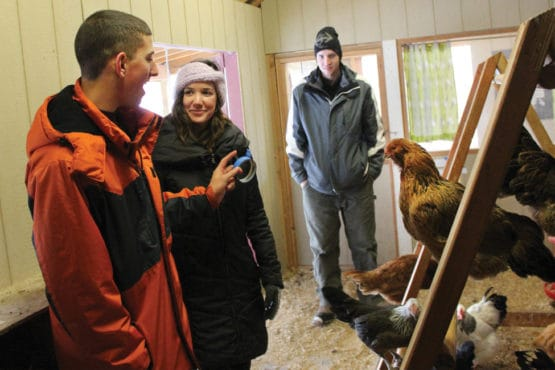 Green Chimneys Students Benefit from OT on the Farm